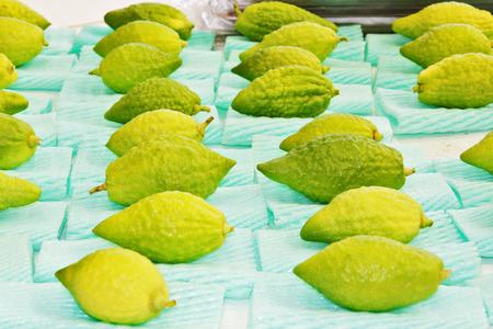 sukkot: Jewish autumn holiday of Sukkot. Ritual fruit - citrus on the traditional pre-holiday bazaar in Jerusalem