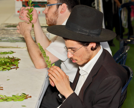 sukkoth festival: BNEY-BRAK, ISRAEL - SEPTEMBER 17, 2013: A young man in  black hat with brim and thin glasses carefully considering the branch of myrtle. The traditional holiday bazaar before Sukkot