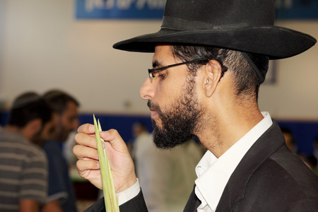 sukkoth festival: BNEY-BRAK, ISRAEL - SEPTEMBER 17, 2013: The young man in black hat with brim and thin glasses carefully considering the branch of myrtle. The traditional holiday bazaar before Sukkot