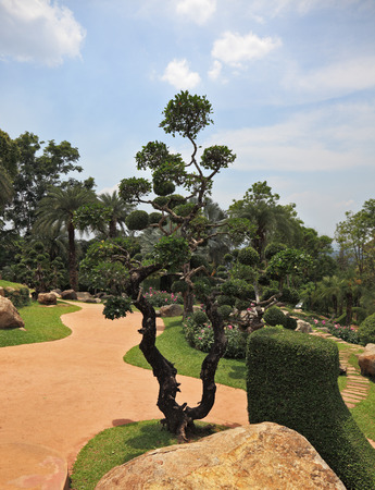 A masterpiece of landscape design - a huge and beautiful park in Thailand. Fancifully trimmed trees, flowers and boulders photo