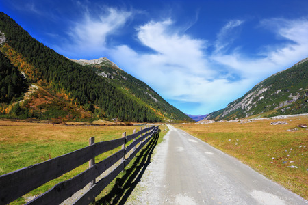 fenced in: Wide fenced road in an alpine valley. Sunny autumn day. The mountain slopes are covered with dense pine forest