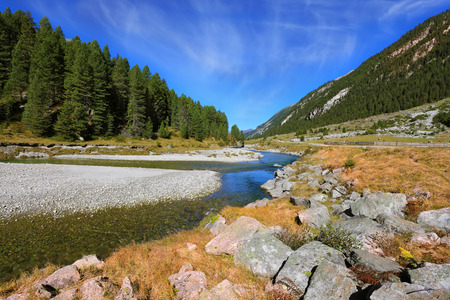 pine creek: Headwaters Krimml waterfalls. The narrow stream flows between fields and pine forests. Autumn creek shallow. Austrian Alps Stock Photo