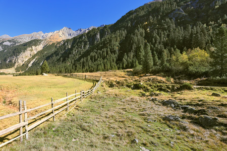 national forests: Alpine Valley in Austria. National Park Krimml waterfalls. Scenic farm fields blocked by the wooden fence. Steep mountain slopes overgrown with coniferous forests