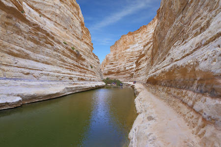 canyon walls: Unique canyon in Israel - En - Avdat. Striped sandstone walls and a cold stream. In the water reflected the canyon walls and sky Stock Photo