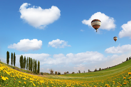 Alley slender cypress trees beautifully into the landscape. Two balloons flying in the blue sky. Wonderful meadow with green grass and yellow buttercups photo