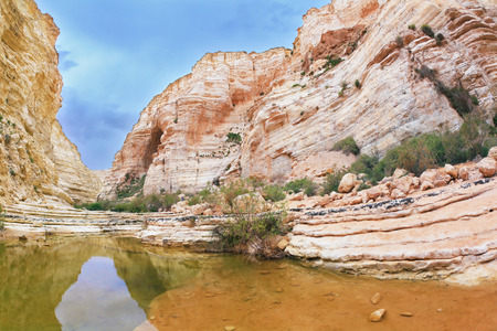 canyon negev: Picturesque canyon Ein-Avdat in the Negev desert. Clean cold water in the creek canyon. Sandstone walls apart, like butterfly wings