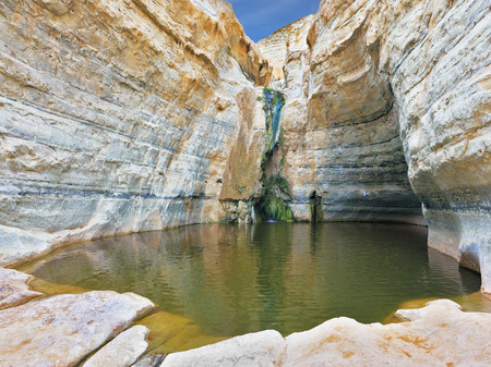 canyon walls: Canyon Ein Avdat in Israel. Thin jet waterfall form cold lake. Sandstone canyon walls form round bowl