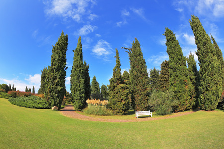 fish eye lens: Gorgeous lawn in a park surrounded by cypress trees. To rest at the track is a handy white bench. Photo made with fish eye lens Stock Photo