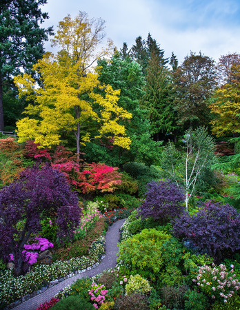 The world-famous masterpiece of park architecture. Butchart Gardens - beautiful gardens on Vancouver Island. Flower beds of colorful flowers and walking paths for tourists Standard-Bild