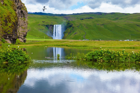 pond: Striking reflection. Abounding waterfall Skogafoss reflected in a small pond. In the middle of the pond picturesque flower beds