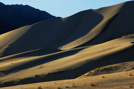 eureka: Morning traces on sand of a mysterious sandy dune Eureka