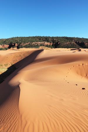 desierto: Reserva Coral Rosa dunas de arena en los Estados Unidos. Elegante duna de naranja-Rosa espectacularmente iluminada por sunrise