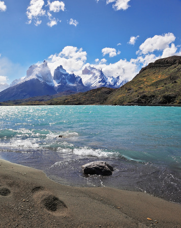 trampled: Sandy Beach Lake Pehoe in the national park Torres del Paine, Chile. Majestic rocks Los Kuernos. The beach is trampled by big traces