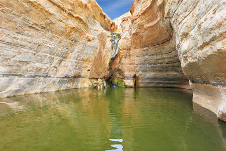 canyon walls: Sandstone canyon walls form round bowl. Thin jet waterfall form cold lake. Canyon Ein Avdat in Israel