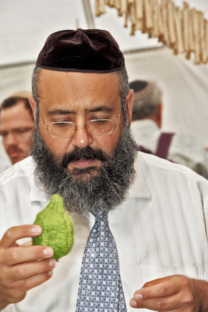 etrog: JERUSALEM, ISRAEL - SEPTEMBER 18, 2013: Traditional market before the holiday of Sukkot. Religious man - Jew with black beard and black skullcap chooses ritual citrus - etrog