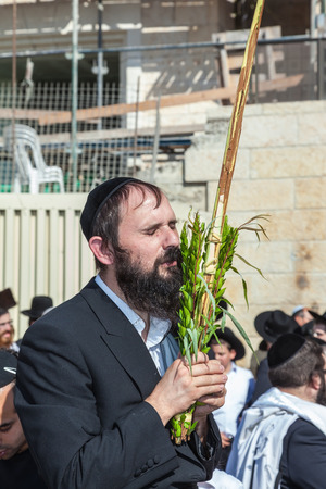 holies: JERUSALEM, ISRAEL - OCTOBER 12, 2014:  Morning autumn Sukkot. The area in front of Western Wall of Temple filled with people. Pilgrims brought the prayer ritual and four plants