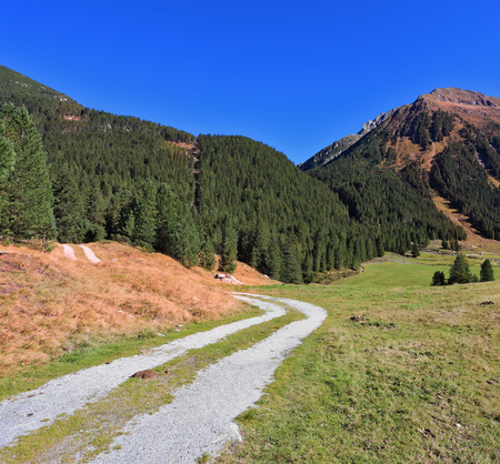 dirt path: Sunny autumn day. Valley in the mountains of Austria. The dirt path winds between yellowed fields Stock Photo