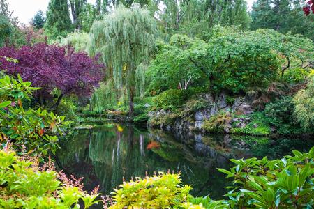 백합, 반사 된 나무 및 꽃으로 자란 작은 연못에. 밴쿠버 섬의 멋진 꽃 공원 Butchart Gardens