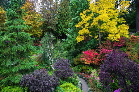 walking paths: The world-famous masterpiece of landscape - landscape architecture. Butchart Gardens - beautiful gardens on Vancouver Island. Flower beds of colorful flowers and walking paths for tourists