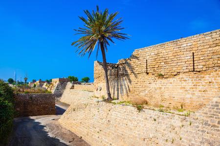caesarea: Deep protective moat around the ancient Caesarea, Israel. Lone palm tree growing on the rocks