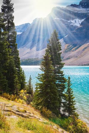 precioso día soleado en las Montañas Rocosas de Canadá. Emerald Lake arco rodeada de rocas y árboles de pino