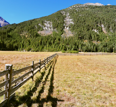 fence: Scenic farm fields blocked bythe wooden fence. Shadow of the low fence beautifully lie on the grass. Alpine Valley in Austria. National Park Krimml waterfalls