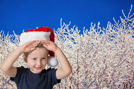 three year old: Three year old boy in red cap of Santa Claus. Cute kid having fun smiling on the background of snow-covered forest Stock Photo