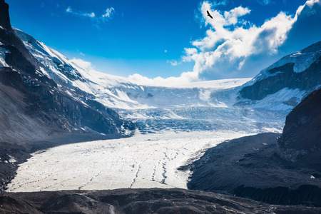 Melting Columbia Icefield in Banff National Park, Canada. The surface of the glacier is covered with huge cracks