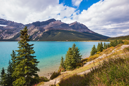 canadian rockies: Gorgeous sunny day at Bow Lake, Canadian Rockies. The lake is surrounded by rocks and pine trees