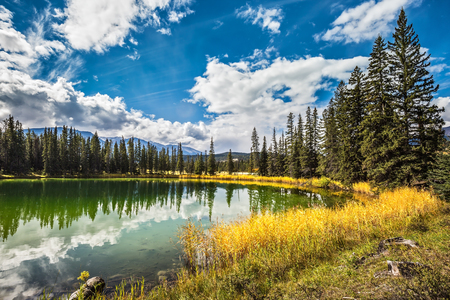 superficial: The small superficial lake is surrounded with coniferous forest. The smooth surface of water reflects the cloudy sky. Autumn day in Jasper National Park  in Canada