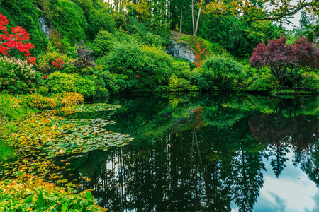 island: Delightful landscaped and floral park Butchart Gardens on Vancouver Island. In a small pond, overgrown with lilies, reflected sky