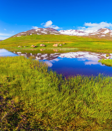 grew: Summer Iceland. Blue lake water reflects snow hills. Fields grew with  fresh green grass Stock Photo