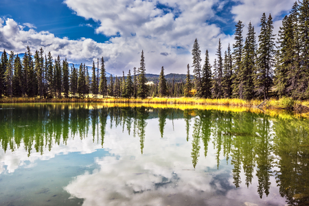 superficial: Autumn day in Jasper National Park  in Canada. The small superficial lake is surrounded with coniferous forest. The smooth surface of water reflects the cloudy sky