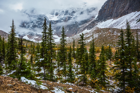 edith: Mount Edith Cavell. Cold start of autumn in Jasper Park. Snow fell in September