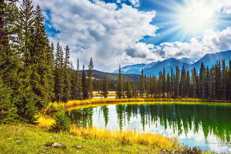 superficial: Sunny autumn day in Jasper National Park  in Canada. The small superficial lake is surrounded with coniferous forest
