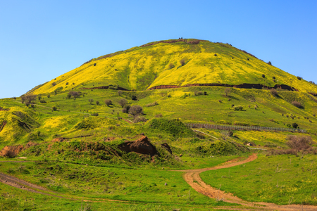 golan: Legendary Golan Heights. Fresh green grass and a picturesque dirt road Stock Photo