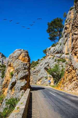 migrating: The largest alpine canyon Verdon, Provence, France. The migrating cranes over mountain road