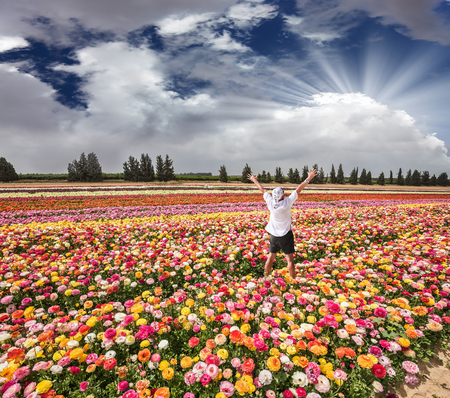 kibbutz: Flower kibbutz near Gaza Strip. Spring flowering buttercups. Stunned tourist in white shirt and bandana greets the rising sun