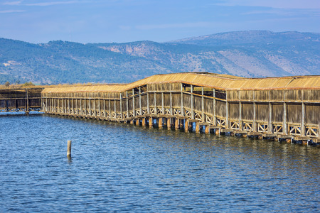 bird of israel: Hula Nature Reserve, Israel, December. Lake Hula is a wintering place for migratory birds. Covered gallery for bird watching Stock Photo