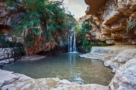 nature reserves of israel: Beautiful waterfall and small scenic pond with clear water. The national park Ein Gedi, Israel