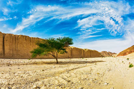 eilat: Majestic beginning of the Black canyon. The stone desert in Eilat mountains, Israel Stock Photo