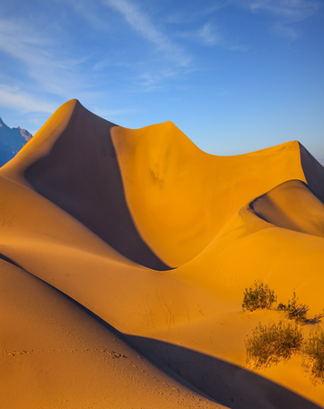 stovepipe: Bright sunny morning in a picturesque part of Death Valley, USA. Mesquite Flat Sand Dunes. Bizarre twists of orange sand dunes