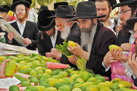 BNEI- BRAK, ISRAEL - SEPTEMBER 17, 2013:  Traditional market before the holiday of Sukkot. Counter with Citron. Religious Jews in black hats and skullcaps carefully selected ritual fruits