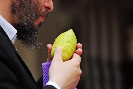 Religious Jew chooses ritual plant - citron- on the bazaar on the eve of Sukkoth. September 22, 2010, Sukkoth market, Bene Brak, Israel