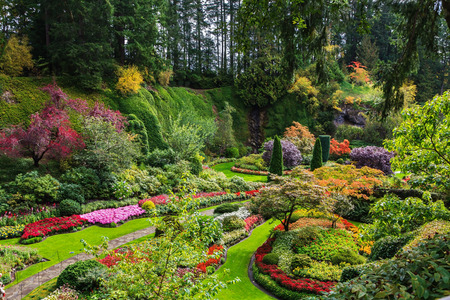 flower garden path: Sunken Garden - the central and beautiful part of park complex. Butchart Gardens - set of beautiful gardens on Vancouver Island, Canada