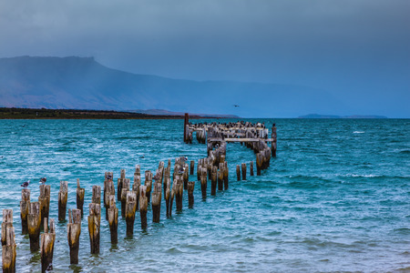 Strait of Magellan summer February afternoon. Waterfront, Punta Arenas.  Piles of the destroyed mooring act from water Stock Photo