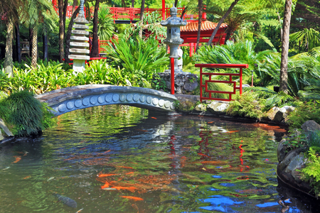 spanned: Lovely pond with goldfish. The banks of the pond fenced railing red Chinese-style. Across the pond spanned by graceful bridge. In the depths of the park is visible Chinese gazebo Editorial