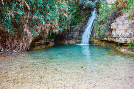 Beautiful waterfall and small scenic lake with clear water. Walk in the national park Ein Gedi, Israel Stock Photo