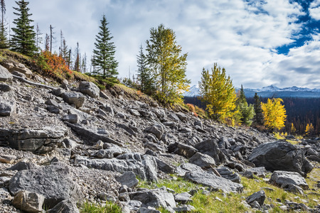jasper: Stony coast of the shoaled Medicine Lake. Fall to Jasper national park, Canada