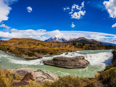 biosphere: Chile, Paine Cascades. Cold water is emerald Paine river forms a cascading waterfalls. Torres del Paine National Park - Biosphere Reserve